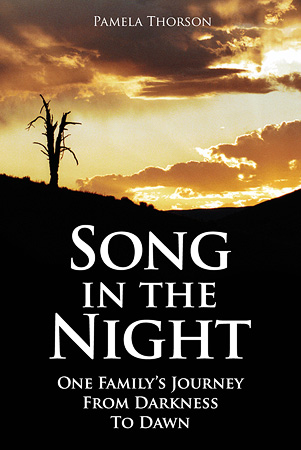 Song in the Night Cover