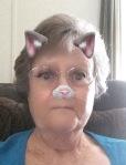 My Kitty Face