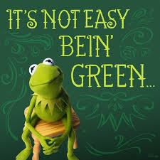 Its-not-easy-bein-green-w-Kermit