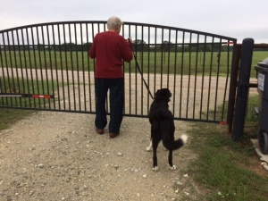 DAvid and spike at the gate