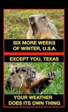 Groundhog day and texas